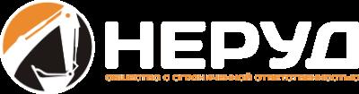 logo_NERUD33